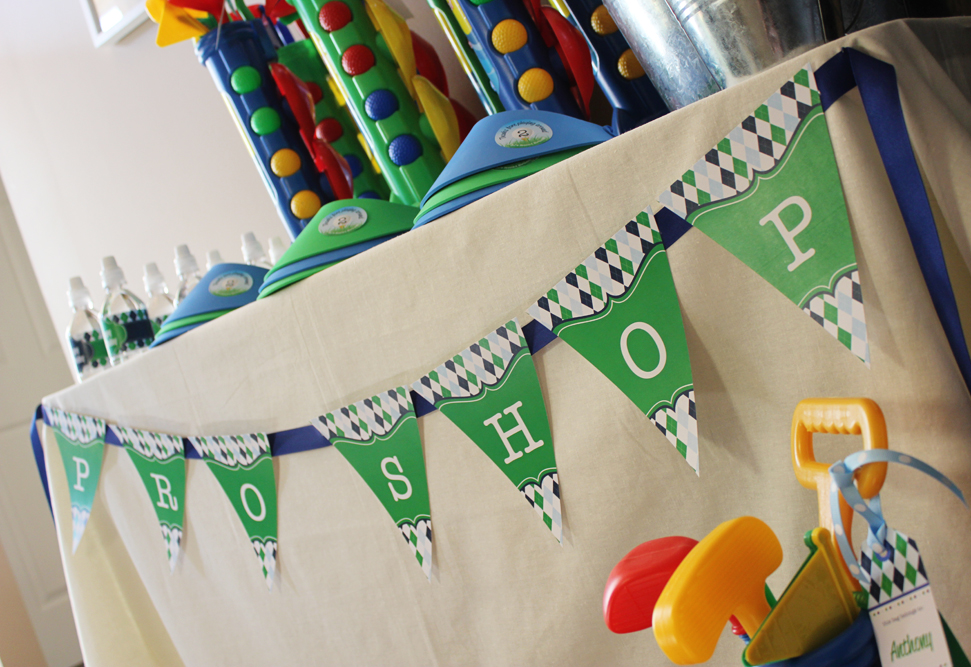 Golfing Birthday Party Decorations