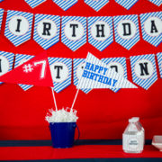 Baseball Party Centerpiece Flag